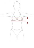 Определение размера груди